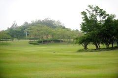 golf course greens Stock Photos
