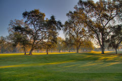 Golf Course Greens HDR Royalty Free Stock Photography