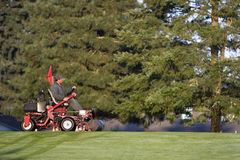 Golf Course Groundskeeper Royalty Free Stock Images