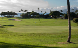 Golf course in Hawaii. A beautiful golf course impeccable lawn, palm trees Maui Hawaii Royalty Free Stock Photos