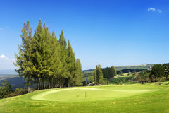 Golf course on hill Royalty Free Stock Image