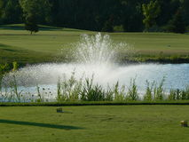 Golf Course Hole with Fountain. Looking beyond the green at a Golf Course fountain on a beautiful day Royalty Free Stock Images