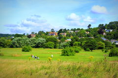 Golf course Hythe Kent England green nature Stock Images