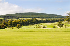 Golf course in Ireland Stock Photography