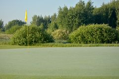 Golf course isolated stock image