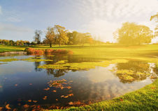 Golf course lake set in an irish forest landscape.  royalty free stock photography