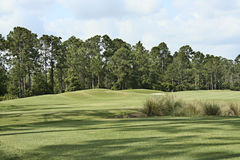 Golf Course Landscape Royalty Free Stock Photos