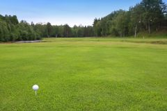 Golf course landscape. With white golf ball on tee, copy space Royalty Free Stock Photography