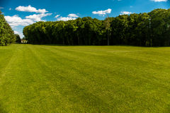 Golf course landscape Stock Images