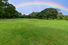 Golf course landscape with tree and rainbow Royalty Free Stock Photos
