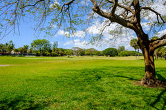 Golf. Course landscape viewed from behind the putting green Royalty Free Stock Photography