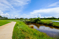 Golf. Course landscape viewed from the cart path Stock Photo