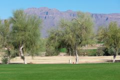 Golf course lined with trees and mountains in the background stock images