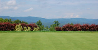 Golf Course in Maine Stock Photos