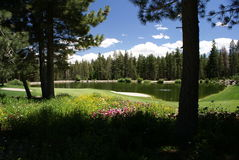 Golf Course in Mammoth Lakes, CA Royalty Free Stock Image