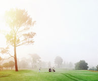 Golf course man royalty free stock photo