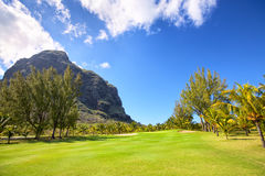 Golf Course in Mauritius Stock Photography