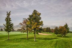 On the golf course in the morning mist Royalty Free Stock Images