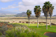Golf course with mountain view Royalty Free Stock Images