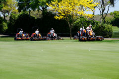Golf Course Mowing Royalty Free Stock Image
