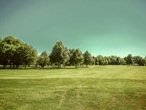 Golf course, natural green meadow, blue sky Royalty Free Stock Photography
