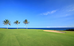 Golf Course on Ocean Coast Royalty Free Stock Photos