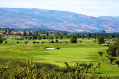Golf course in the Okanagan valley Stock Images