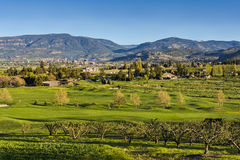 Golf Course Okanagan Valley Kelowna British Columbia. A golf course in the Okanagan Valley with the Kelowna British Columbia Canada skyline and Okanagan Lake in Royalty Free Stock Image