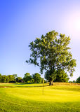 Golf course Stock Photos