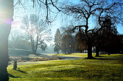 Golf course. In Oregon in the early morning. The sun was breaking through the fog Royalty Free Stock Photos