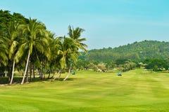 Golf course. palms landscape Royalty Free Stock Photography