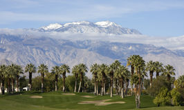 Golf Course by Palms and Mountains. A golf course sits prettily in front of palm trees and snow capped mountains Royalty Free Stock Images