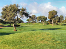 Golf Course Panorama Stock Images