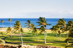 Golf Course in Paradise Stock Image