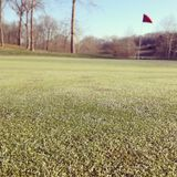 Golf Course. Picture from last winter on a golf course Royalty Free Stock Image