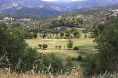 Golf course of Porto Carras Grand Resort. Stock Image