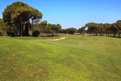 Golf course with sand trap. Stock Photography