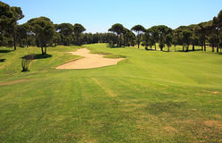 Golf course with sand trap. Stock Photo