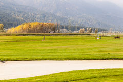 Golf course with sand trap royalty free stock photography