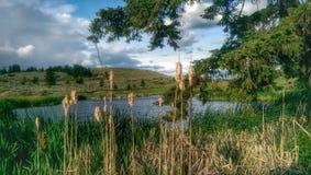 Golf Course. Scenic countyside lake Stock Photos