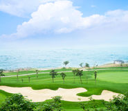 Golf course and sea. The grass of the golf course at the beach Stock Image