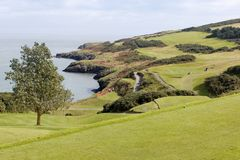 Golf course on a seashore. In Wicklow, Ireland stock photography