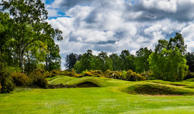 Golf course. A secluded green on a golf course, protected by trees and bunkers Stock Images