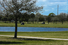 Golf Course Series. Florida golf course greens and fairways in spring Royalty Free Stock Photos