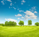 Golf course. Spring field with green grass and blue sky Stock Photo