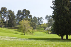 Golf course in spring Stock Images