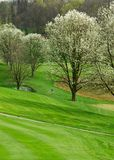 Golf Course In Springtime Stock Images