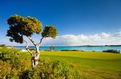 Golf course. Stunning view of a coastal golf course at Caribbean Stock Photos
