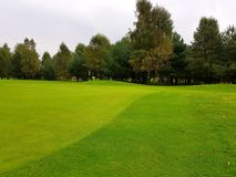 Golf course during summe Royalty Free Stock Images