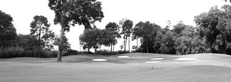 Golf Course. In summer with sand traps and trees Stock Photo